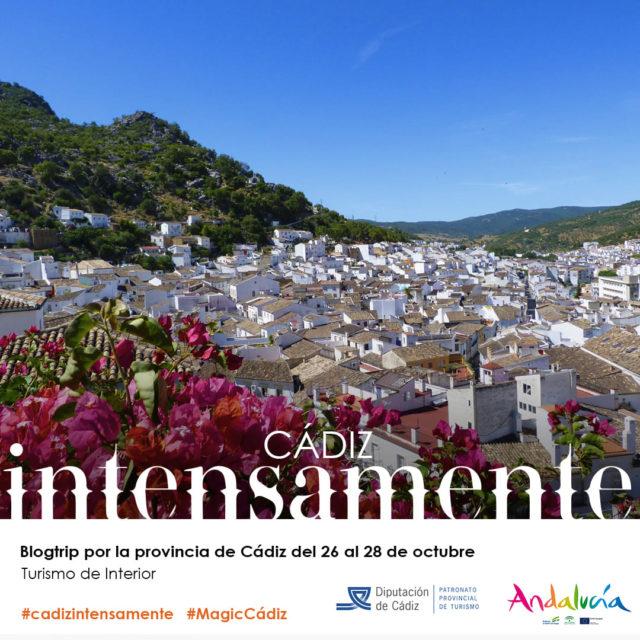 Cádiz intensamente