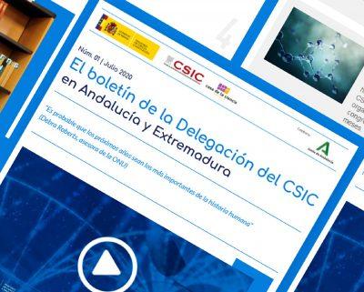 Newsletter CSIC