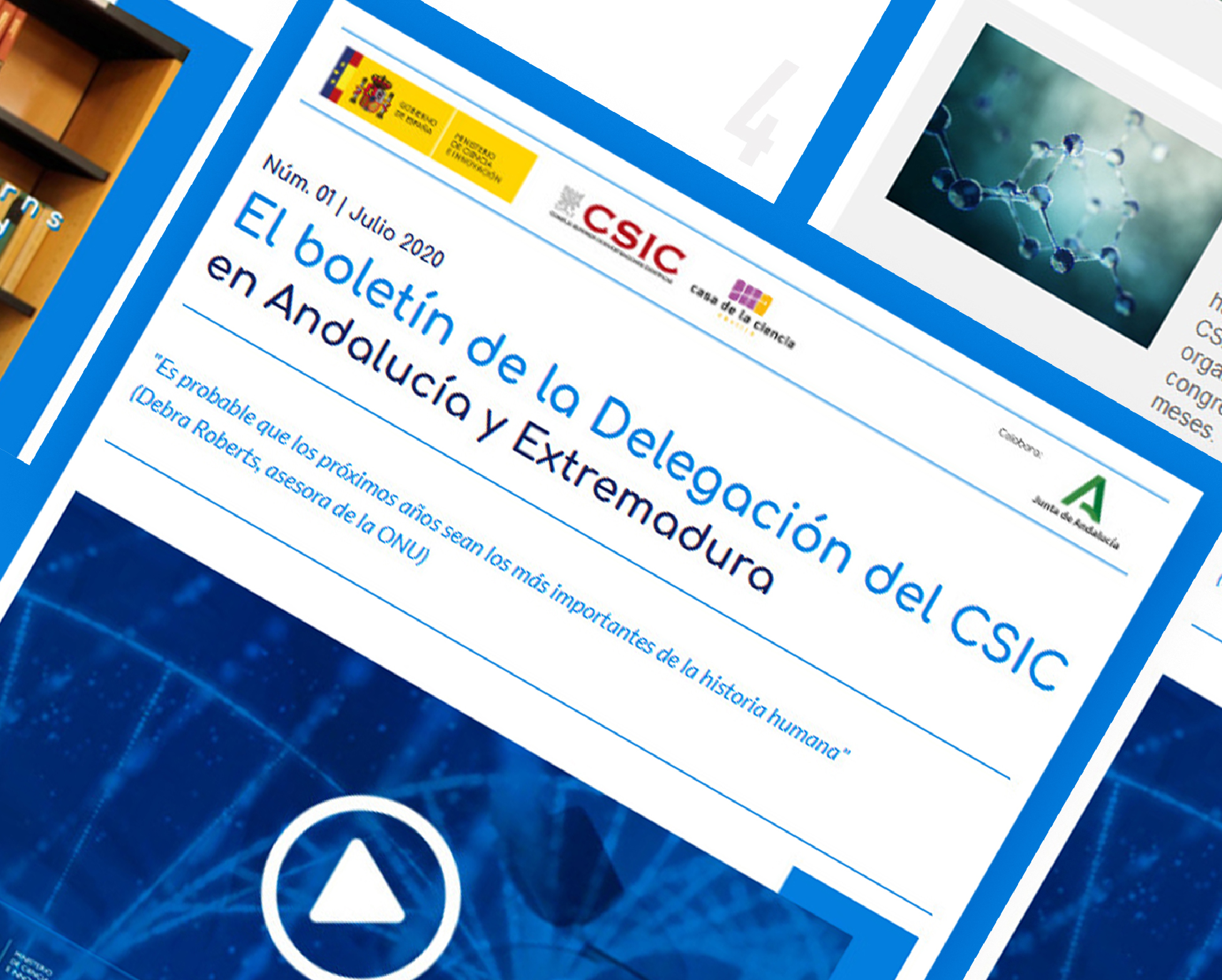 Newsletter CSIC